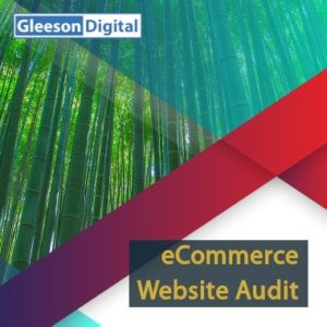 ecommerce website audit gleeson digital