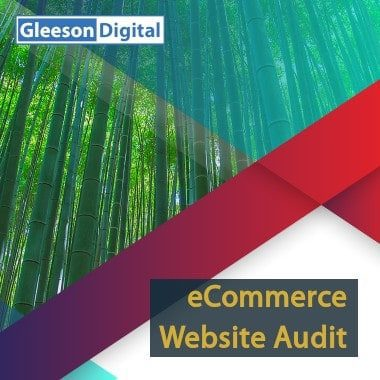 ecommerce website audit gleeson digital
