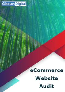 website audit for eCommerce websites